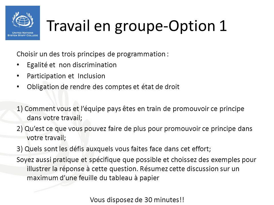 Travail en groupe-Option 1 Choisir un des trois principes de programmation : Egalité et non discrimination Participation et Inclusion Obligation de re