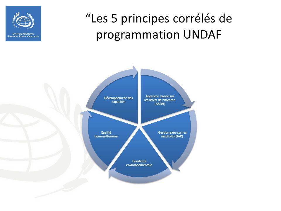 Les 5 principes corrélés de programmation UNDAF Approche basée sur les droits de lhomme (ABDH) Gestion axée sur les résultats (GAR) Durabilité environnementale Egalité homme/femme Développement des capacités