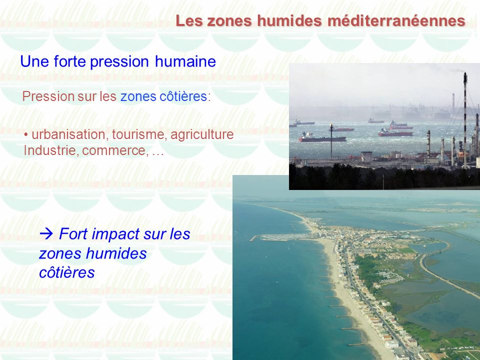 Les zones humides méditerranéennes Une forte pression humaine Pression sur les zones côtières: Fort impact sur les zones humides côtières urbanisation