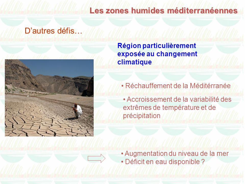 Région particulièrement exposée au changement climatique Réchauffement de la Méditérranée Accroissement de la variabilité des extrêmes de température