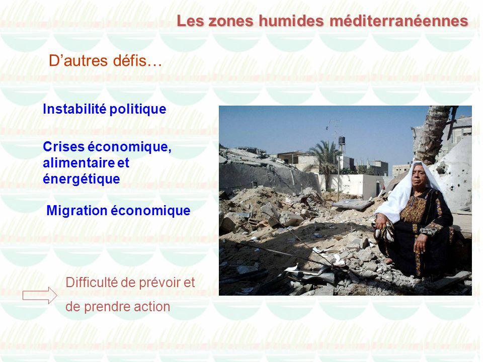Instabilité politique Difficulté de prévoir et de prendre action Les zones humides méditerranéennes Dautres défis… Crises économique, alimentaire et é