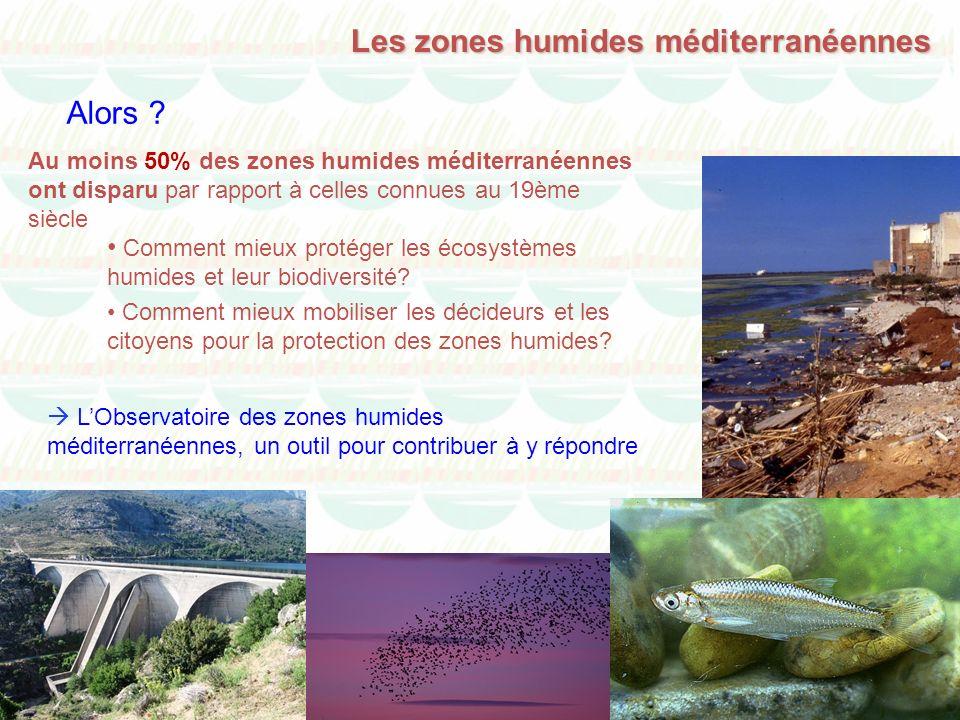 Au moins 50% des zones humides méditerranéennes ont disparu par rapport à celles connues au 19ème siècle Comment mieux protéger les écosystèmes humide
