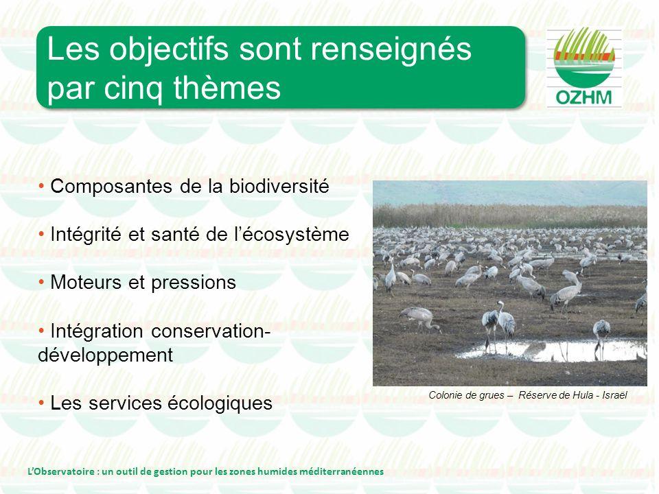 Composantes de la biodiversité Intégrité et santé de lécosystème Moteurs et pressions Intégration conservation- développement Les services écologiques