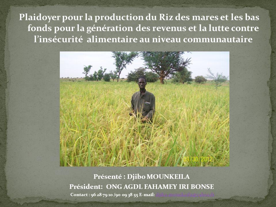 Plaidoyer pour la production du Riz des mares et les bas fonds pour la génération des revenus et la lutte contre linsécurité alimentaire au niveau com