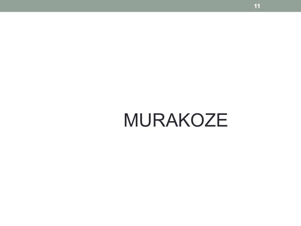 11 MURAKOZE