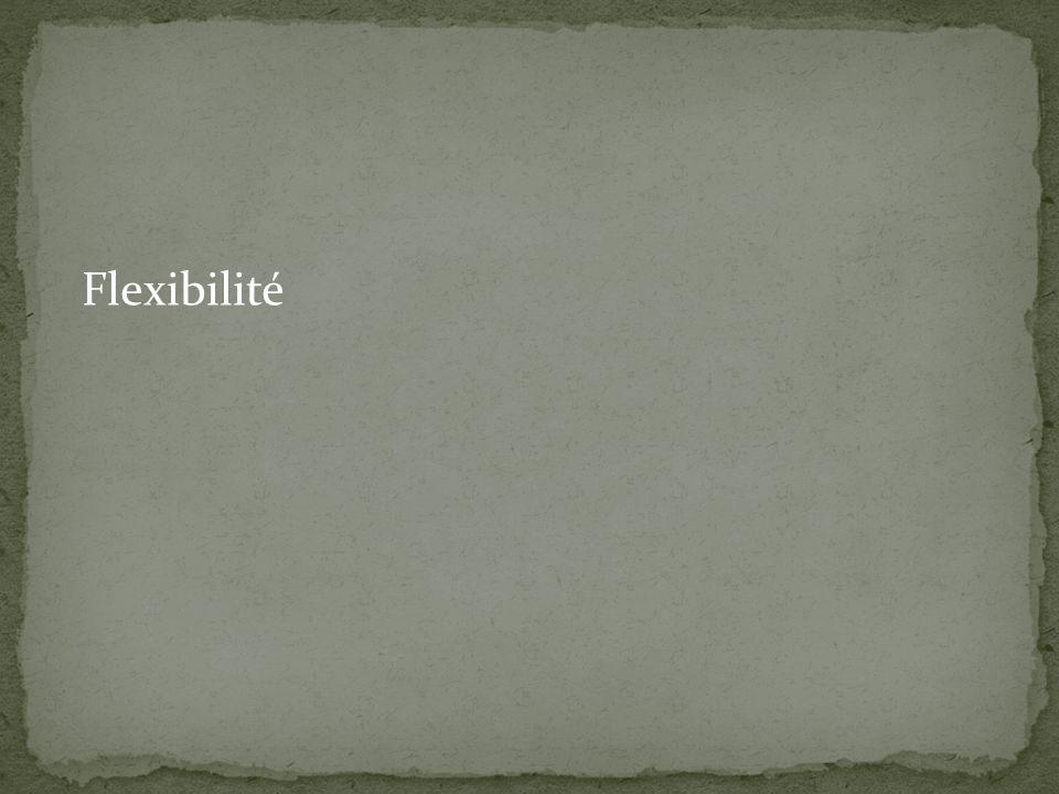 Flexibilité