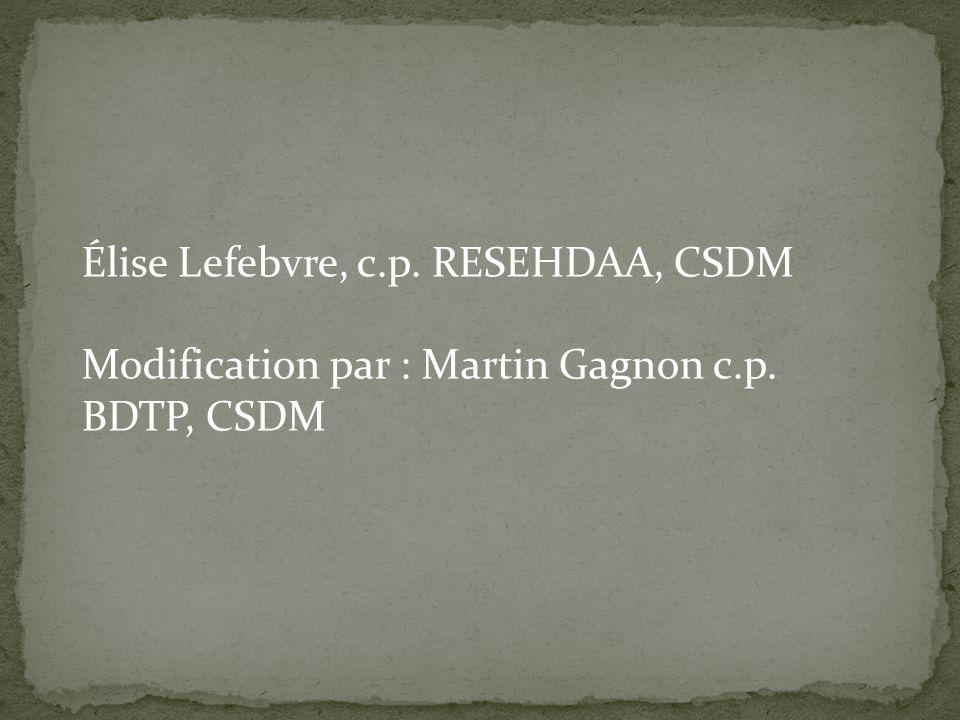 Élise Lefebvre, c.p. RESEHDAA, CSDM Modification par : Martin Gagnon c.p. BDTP, CSDM