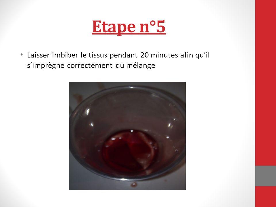Etape n°5 Laisser imbiber le tissus pendant 20 minutes afin quil simprègne correctement du mélange