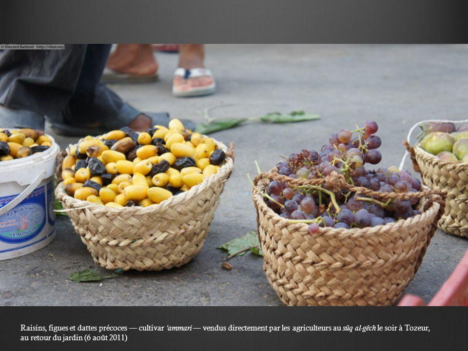 Raisins, figues et dattes précoces cultivar ammari vendus directement par les agriculteurs au sûq al-gêch le soir à Tozeur, au retour du jardin (6 aoû