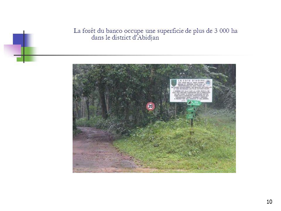10 La forêt du banco occupe une superficie de plus de 3 000 ha dans le district dAbidjan
