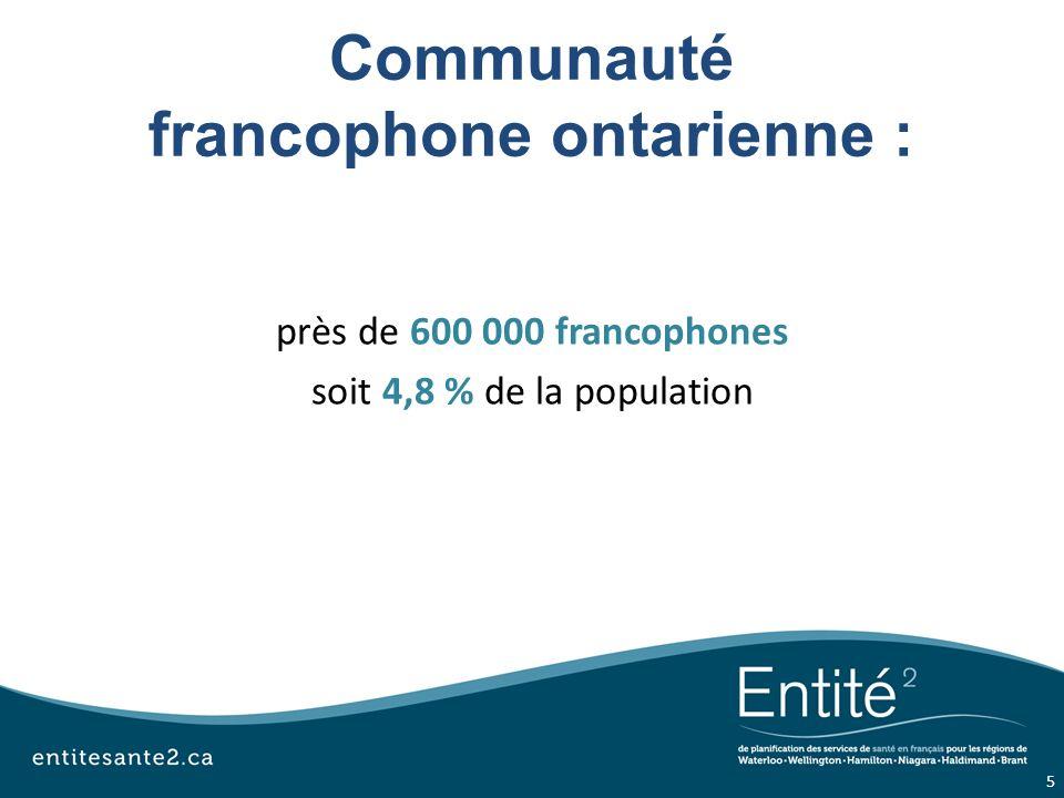 Prise daction : sur les 5 prochaines années Engager la collectivité francophone sur les priorités du système de santé Responsabiliser le système de santé local à légard des services de santé en français Impliquer les francophones dans la planification de leurs services de santé 16