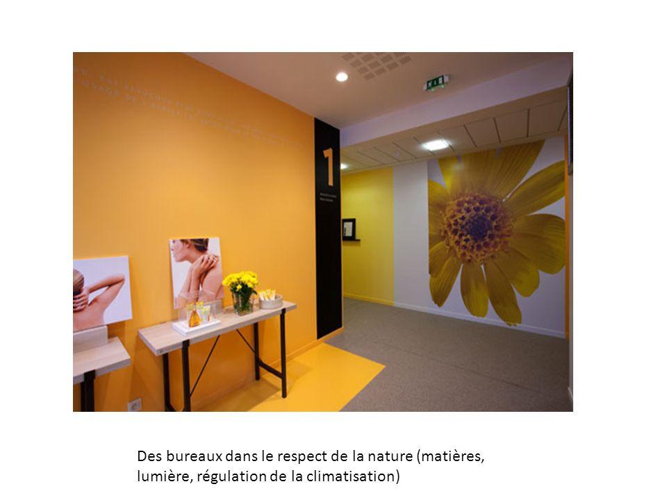 Des bureaux dans le respect de la nature (matières, lumière, régulation de la climatisation)