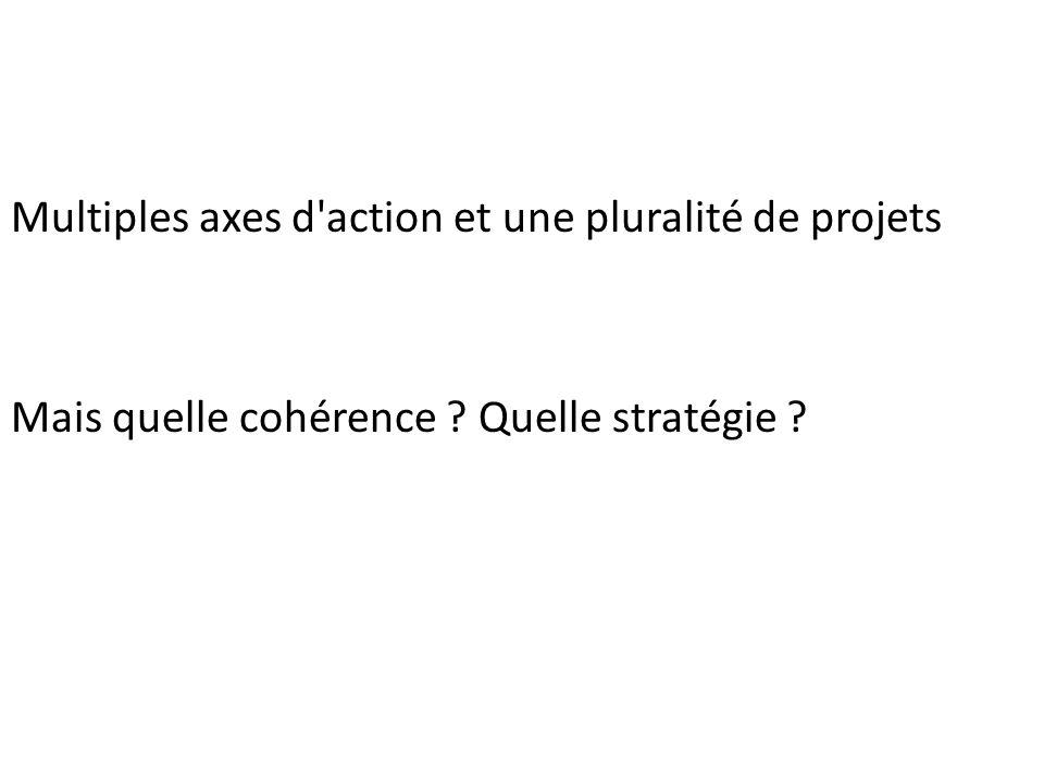 Multiples axes d'action et une pluralité de projets Mais quelle cohérence ? Quelle stratégie ?
