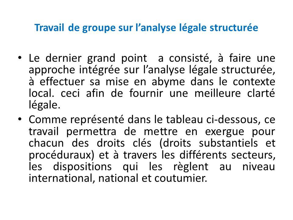 Travail de groupe sur lanalyse légale structurée Le dernier grand point a consisté, à faire une approche intégrée sur lanalyse légale structurée, à ef
