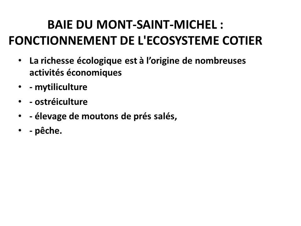 BAIE DU MONT-SAINT-MICHEL : FONCTIONNEMENT DE L'ECOSYSTEME COTIER La richesse écologique est à lorigine de nombreuses activités économiques - mytilicu