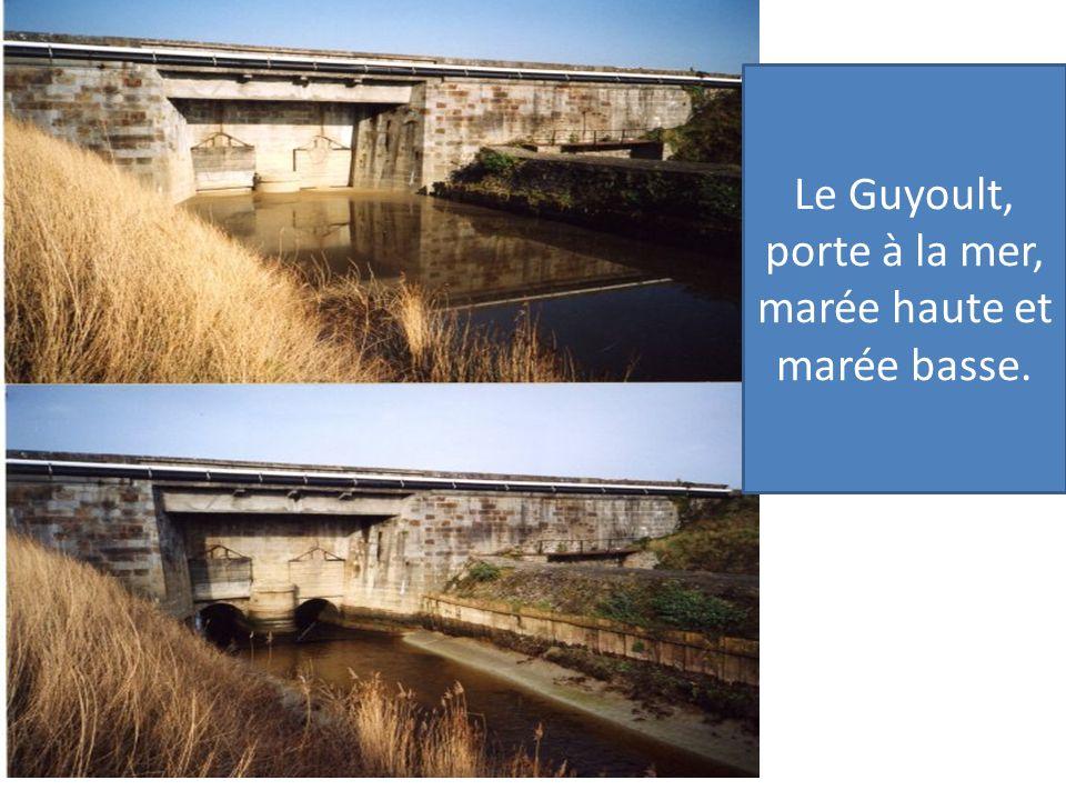 Les travaux des hommes marais noir de Lillemer, la digue route Le Guyoult, porte à la mer, marée haute et marée basse.