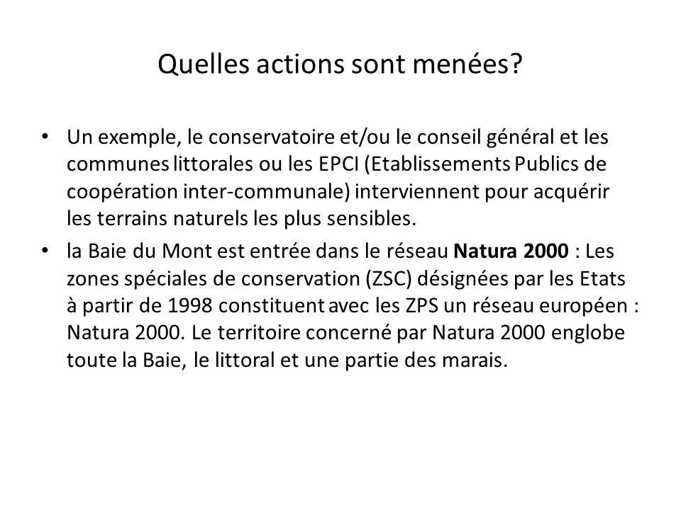 Quelles actions sont menées? Un exemple, le conservatoire et/ou le conseil général et les communes littorales ou les EPCI (Etablissements Publics de c