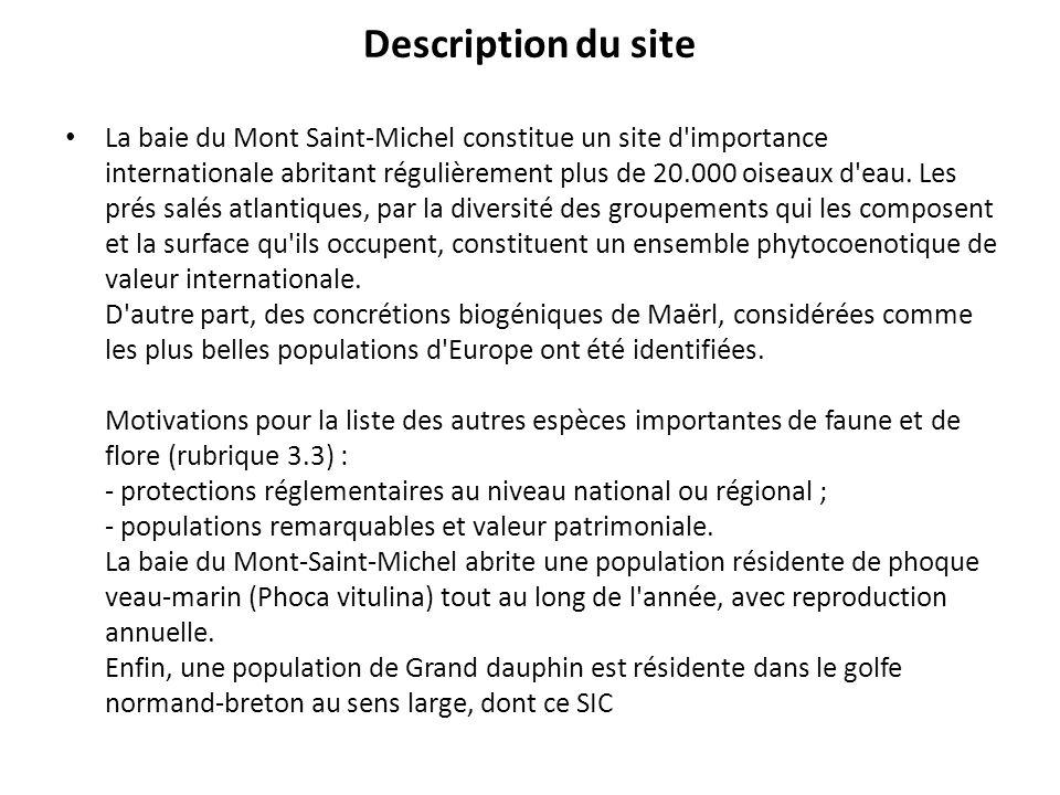 Description du site La baie du Mont Saint-Michel constitue un site d'importance internationale abritant régulièrement plus de 20.000 oiseaux d'eau. Le
