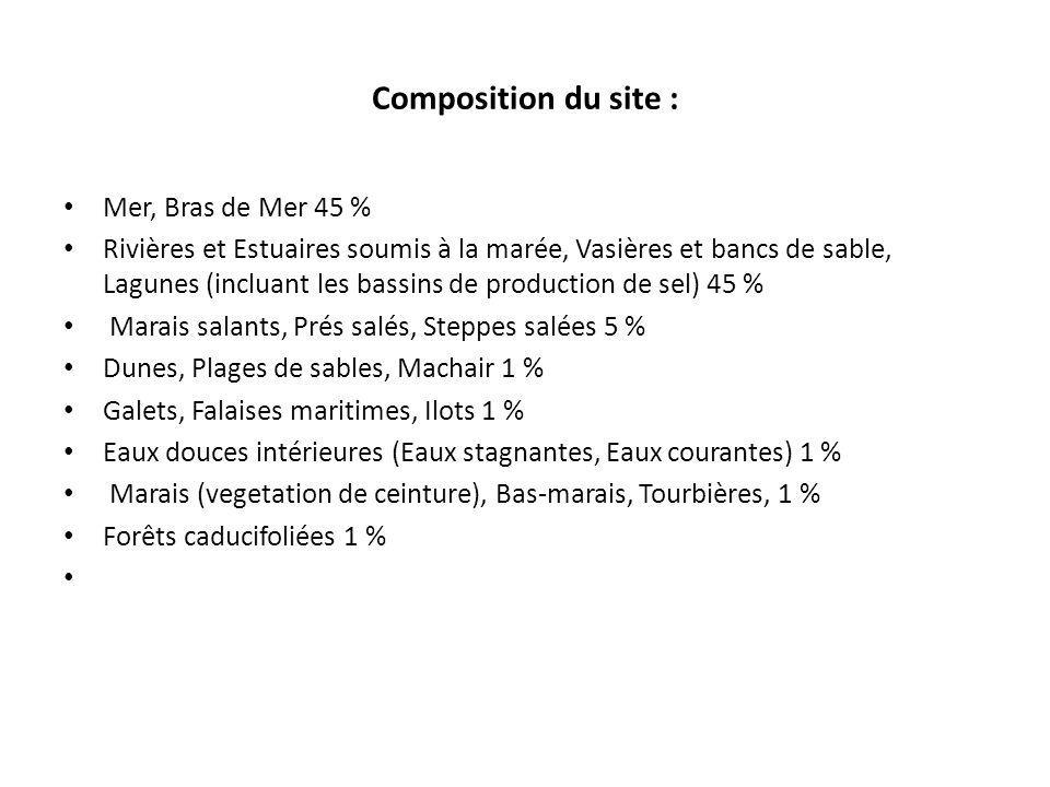 Composition du site : Mer, Bras de Mer 45 % Rivières et Estuaires soumis à la marée, Vasières et bancs de sable, Lagunes (incluant les bassins de prod