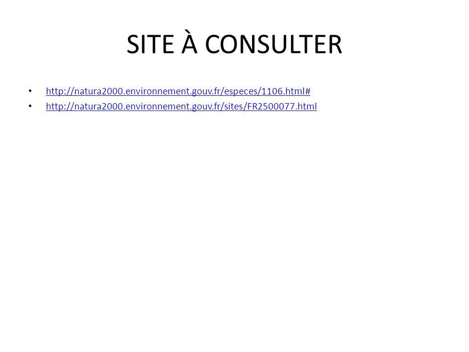 SITE À CONSULTER http://natura2000.environnement.gouv.fr/especes/1106.html# http://natura2000.environnement.gouv.fr/sites/FR2500077.html