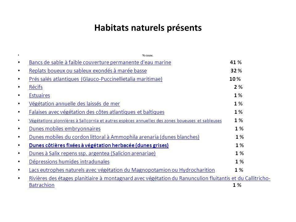 Habitats naturels présents % couv. Bancs de sable à faible couverture permanente d'eau marine 41 % Bancs de sable à faible couverture permanente d'eau