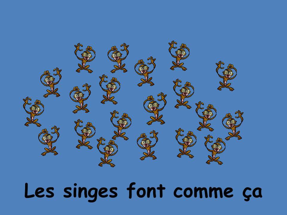 Les singes font comme ça