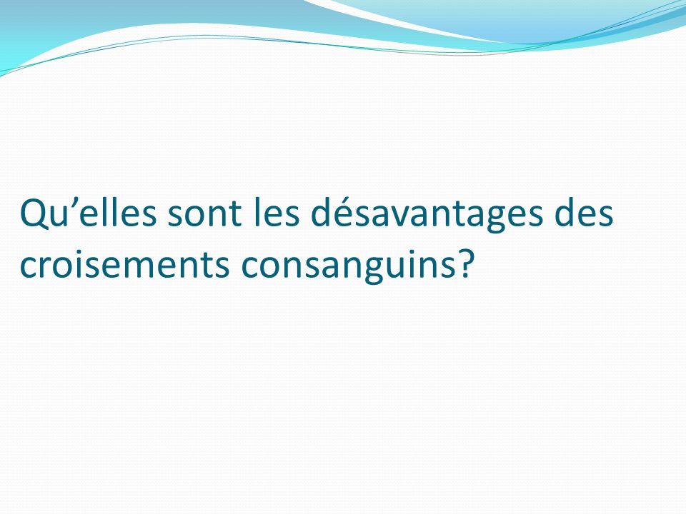 Quelles sont les désavantages des croisements consanguins?