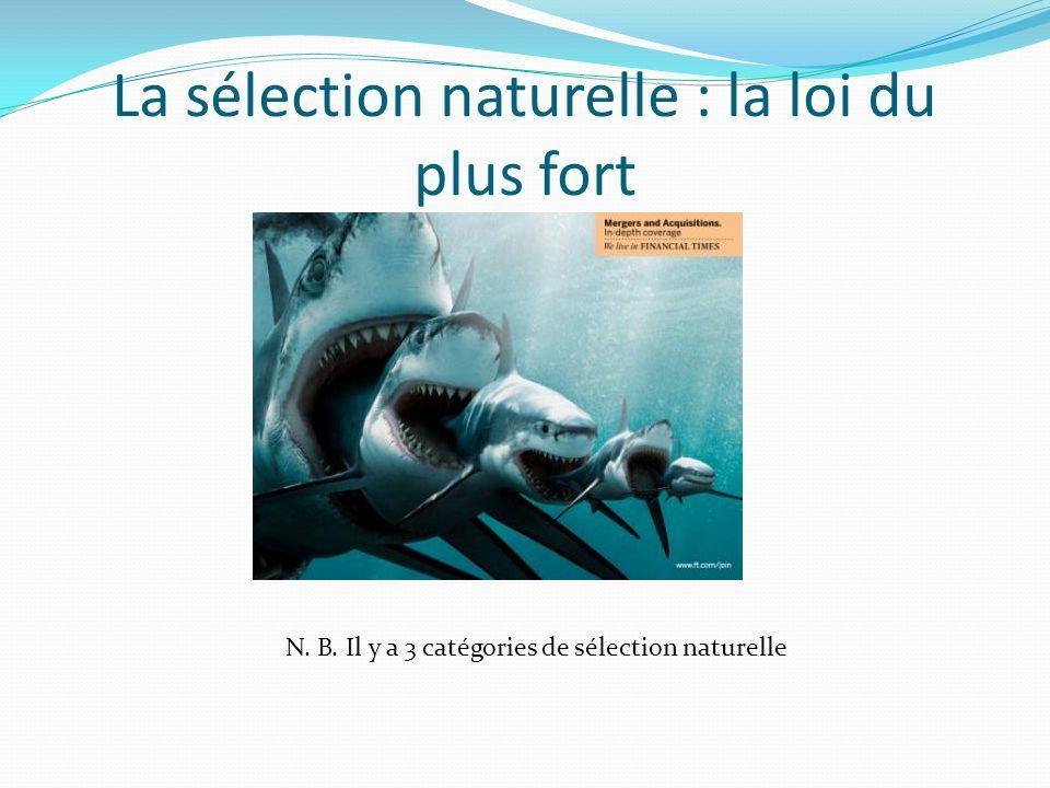 La sélection naturelle : la loi du plus fort N. B. Il y a 3 catégories de sélection naturelle