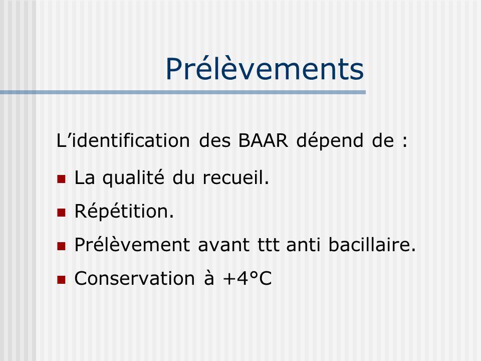 Lagent pathogène D- Résistances Résistance naturelle: BK sauvages Mutants Résistants. Résistance primaire. Résistance secondaire