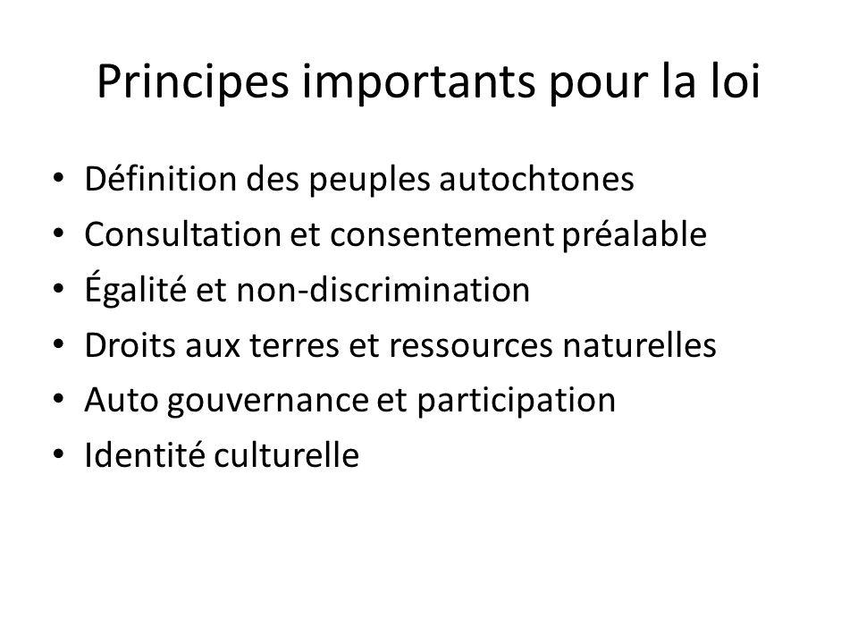 Principes importants pour la loi Définition des peuples autochtones Consultation et consentement préalable Égalité et non-discrimination Droits aux te