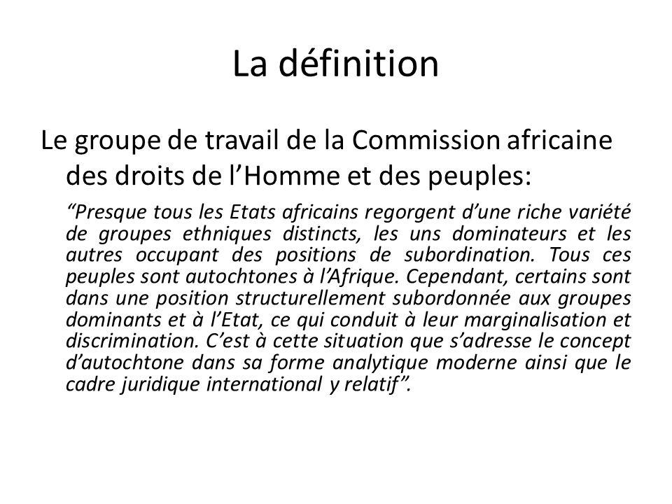 La définition Le groupe de travail de la Commission africaine des droits de lHomme et des peuples: Presque tous les Etats africains regorgent dune ric