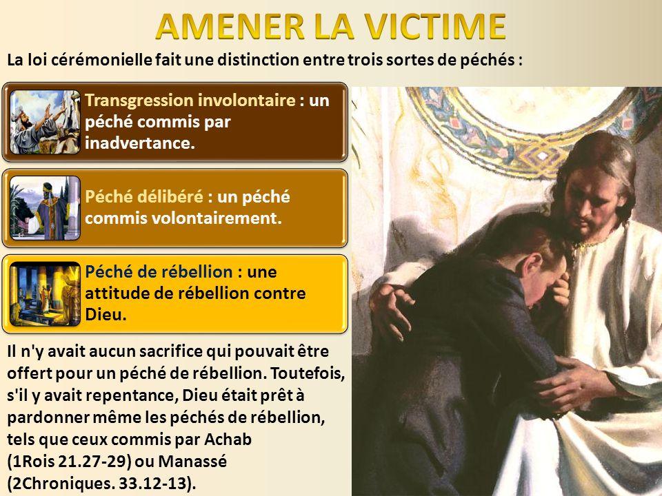 Le pécheur repentant devait se présenter dans le sanctuaire avec une victime.