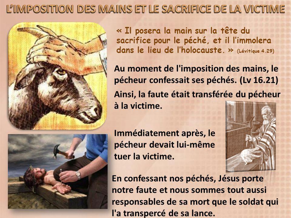 « Il posera la main sur la tête du sacrifice pour le péché, et il limmolera dans le lieu de lholocauste.