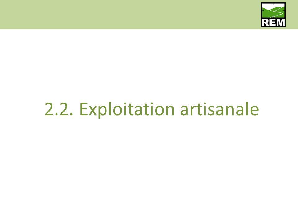 2.2. Exploitation artisanale