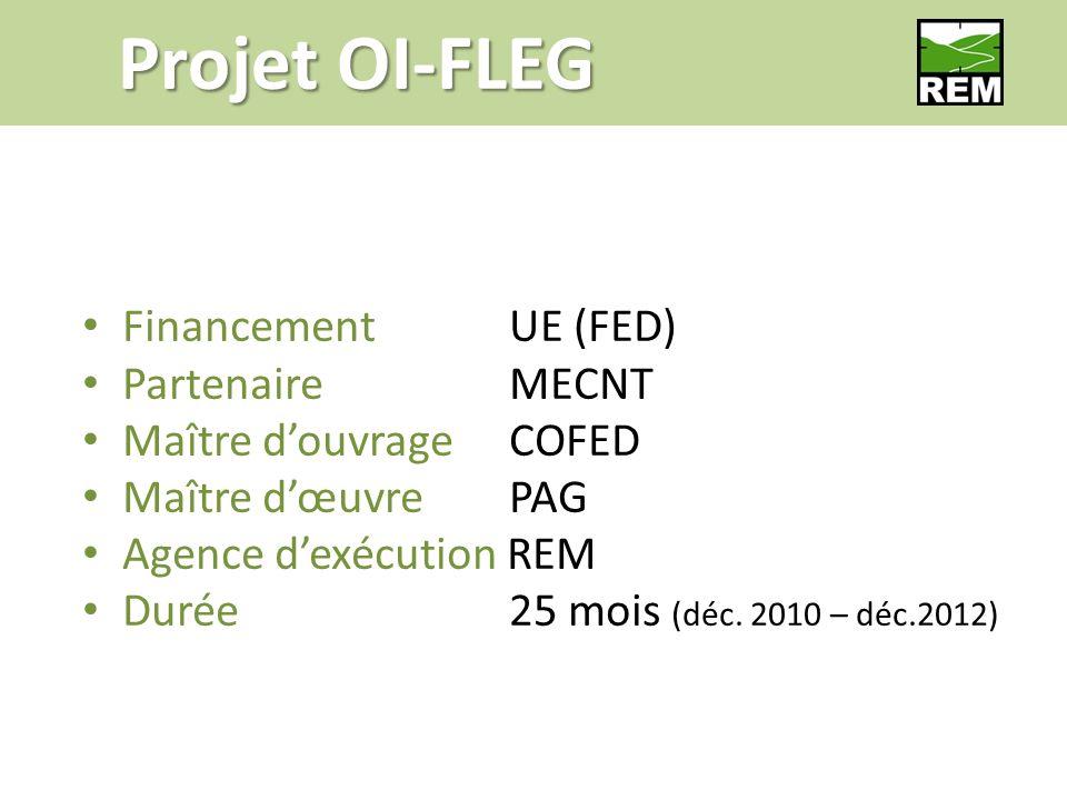 FinancementUE (FED) PartenaireMECNT Maître douvrageCOFED Maître dœuvrePAG Agence dexécution REM Durée 25 mois (déc.