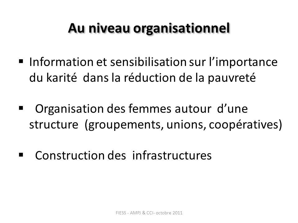 Au niveau organisationnel Information et sensibilisation sur limportance du karité dans la réduction de la pauvreté Organisation des femmes autour dune structure (groupements, unions, coopératives) Construction des infrastructures FIESS - AMPJ & CCI- octobre 2011