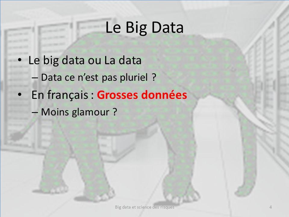 Le Big Data Le big data ou La data – Data ce nest pas pluriel ? En français : Grosses données – Moins glamour ? Big data et science des risques4