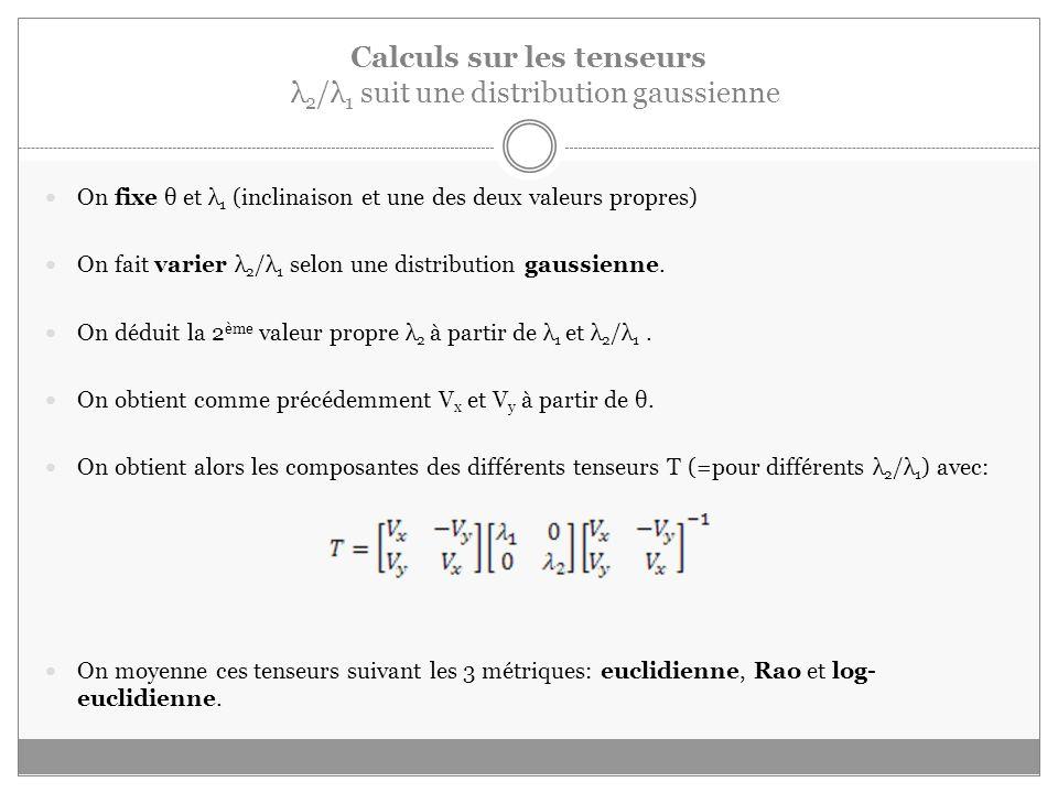 Calculs sur les tenseurs λ 2 /λ 1 suit une distribution gaussienne On fixe θ et λ 1 (inclinaison et une des deux valeurs propres) On fait varier λ 2 /λ 1 selon une distribution gaussienne.