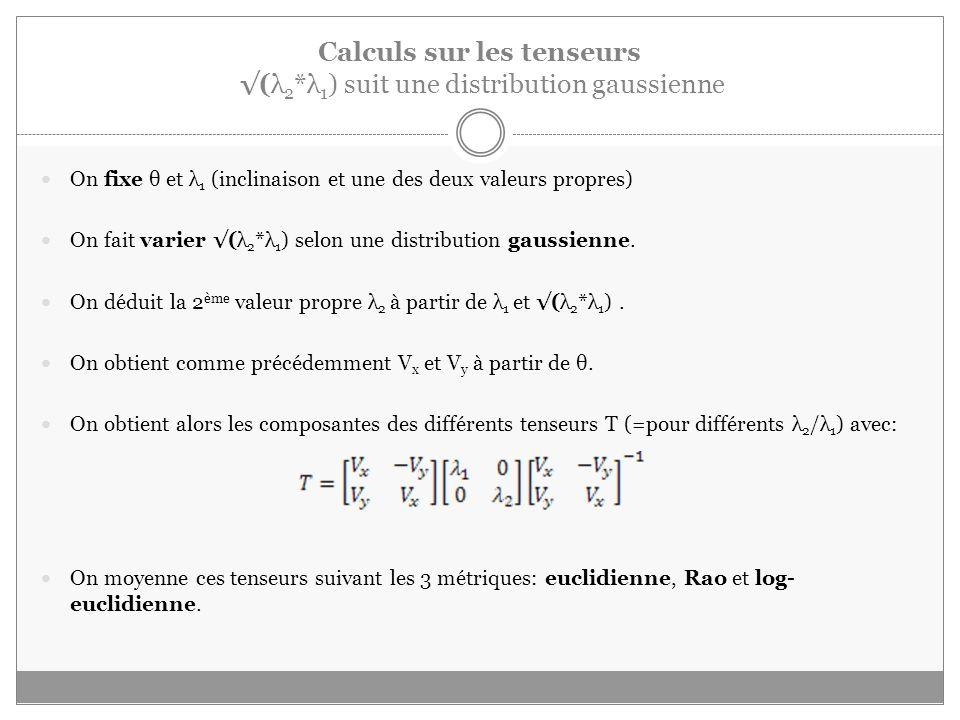 Calculs sur les tenseurs (λ 2 *λ 1 ) suit une distribution gaussienne On fixe θ et λ 1 (inclinaison et une des deux valeurs propres) On fait varier (λ 2 *λ 1 ) selon une distribution gaussienne.