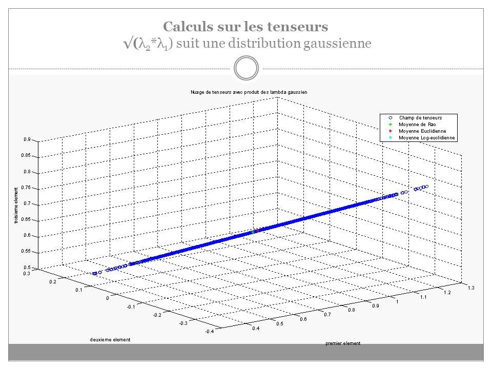 Calculs sur les tenseurs (λ 2 *λ 1 ) suit une distribution gaussienne