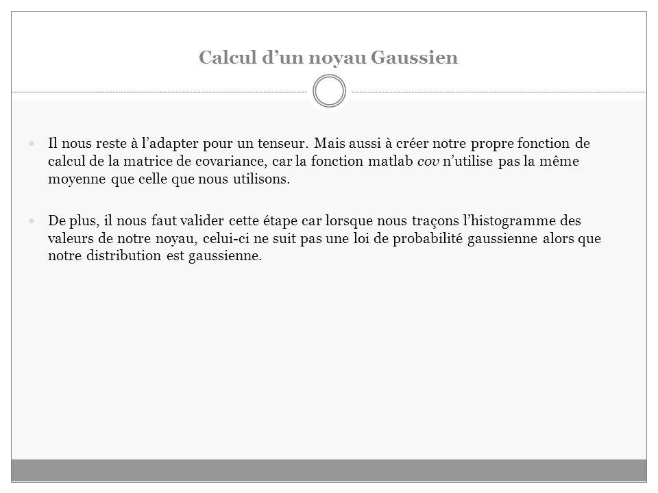 Calcul dun noyau Gaussien Il nous reste à ladapter pour un tenseur.