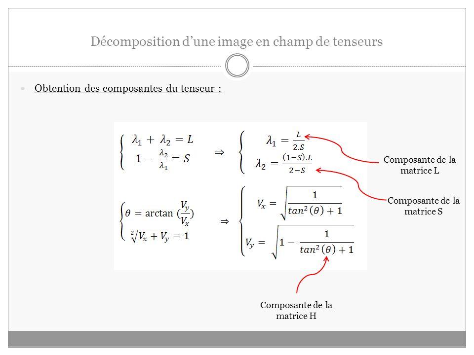 Décomposition dune image en champ de tenseurs Obtention des composantes du tenseur : Composante de la matrice L Composante de la matrice S Composante de la matrice H