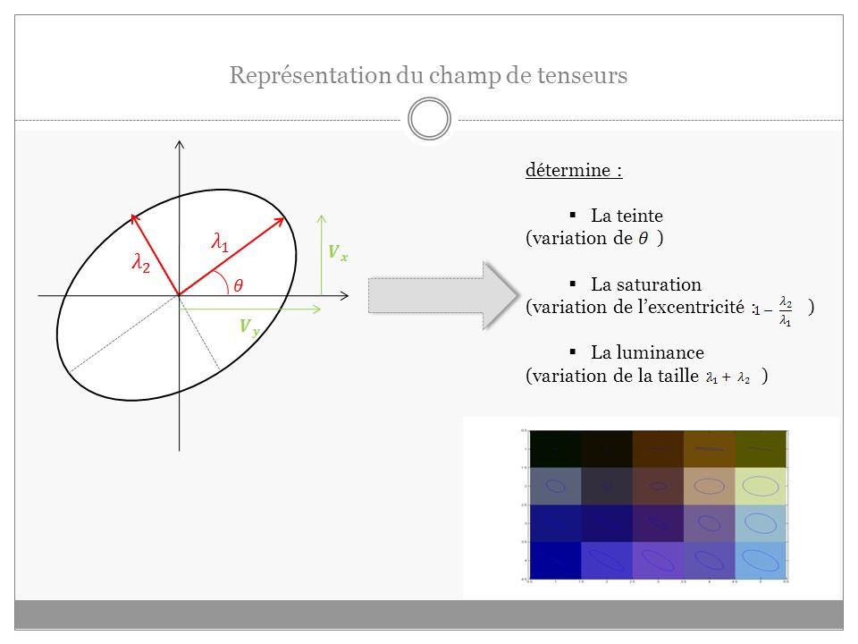 Représentation du champ de tenseurs détermine : La teinte (variation de ) La saturation (variation de lexcentricité : ) La luminance (variation de la taille : )