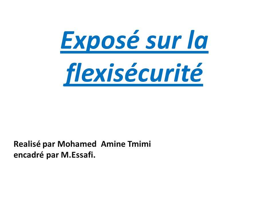 Realisé par Mohamed Amine Tmimi encadré par M.Essafi. Exposé sur la flexisécurité