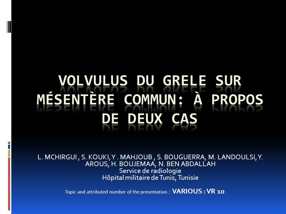 L.MCHIRGUI, S. KOUKI, Y. MAHJOUB, S. BOUGUERRA, M.