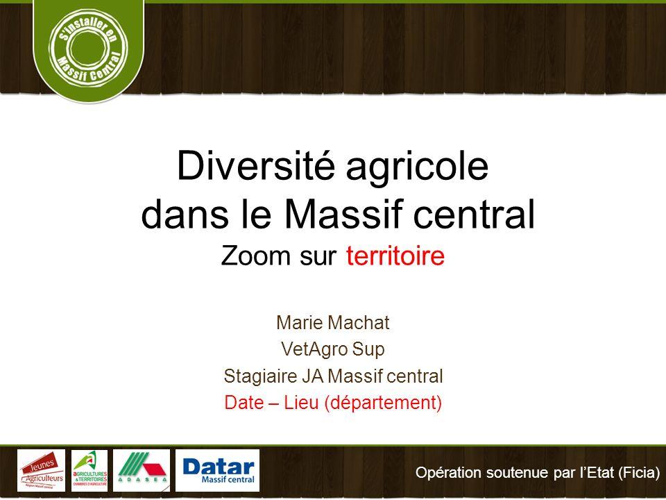 Diversité agricole dans le Massif central Zoom sur territoire Marie Machat VetAgro Sup Stagiaire JA Massif central Date – Lieu (département) Opération