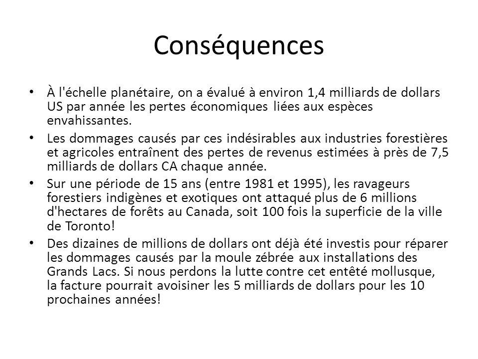 Conséquences À l échelle planétaire, on a évalué à environ 1,4 milliards de dollars US par année les pertes économiques liées aux espèces envahissantes.