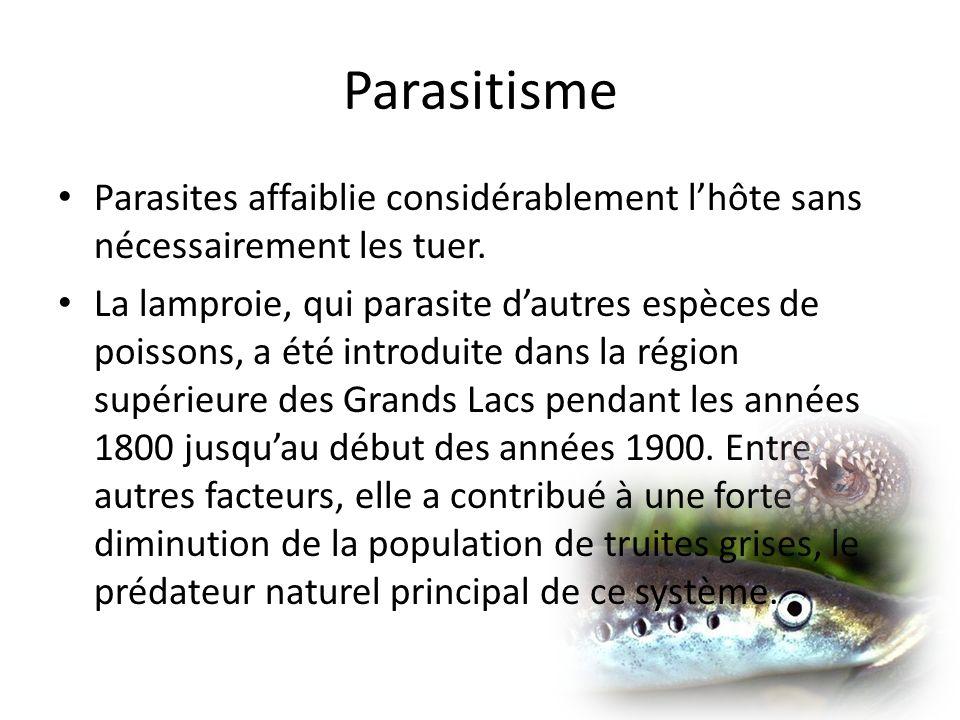 Parasitisme Parasites affaiblie considérablement lhôte sans nécessairement les tuer.
