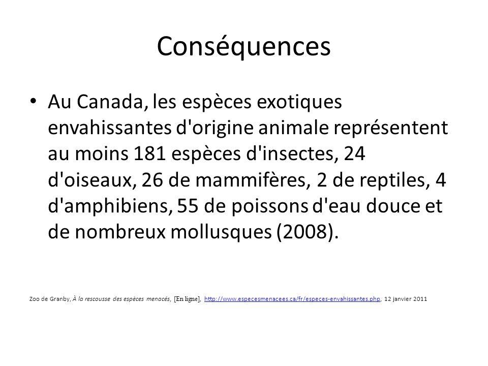 Conséquences Au Canada, les espèces exotiques envahissantes d origine animale représentent au moins 181 espèces d insectes, 24 d oiseaux, 26 de mammifères, 2 de reptiles, 4 d amphibiens, 55 de poissons d eau douce et de nombreux mollusques (2008).