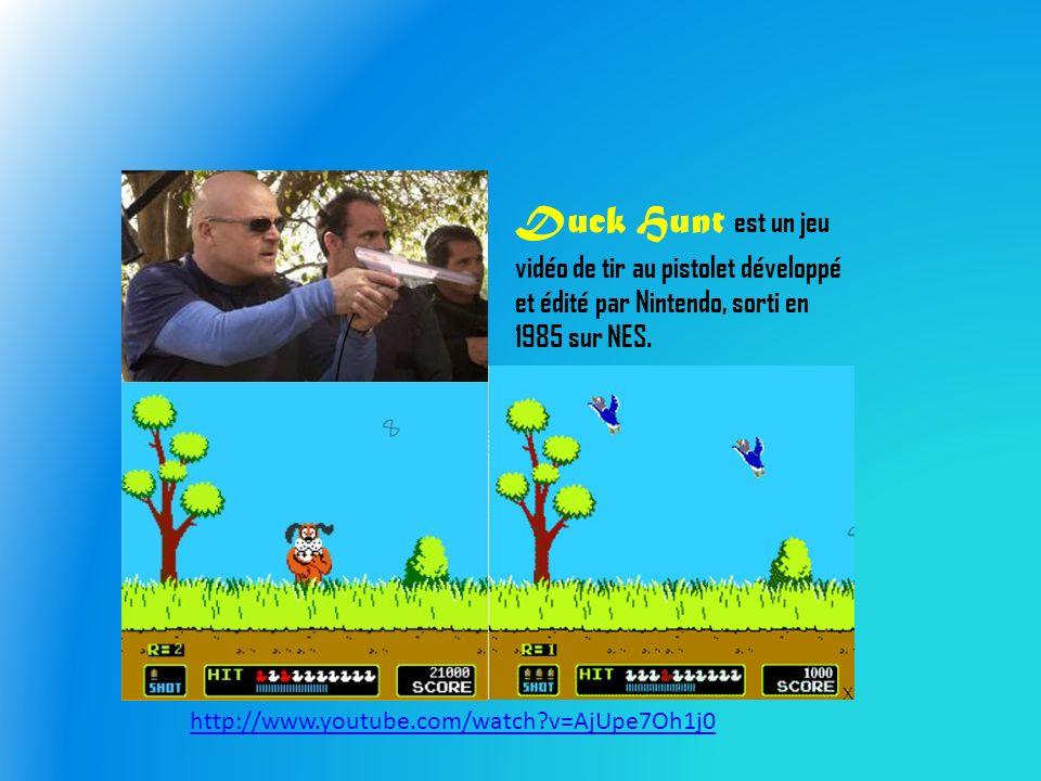 Duck Hunt est un jeu vidéo de tir au pistolet développé et édité par Nintendo, sorti en 1985 sur NES.